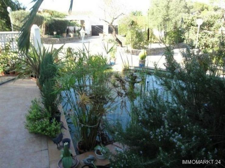 Bild 3: Villa mit Pool in ruhiger Lage