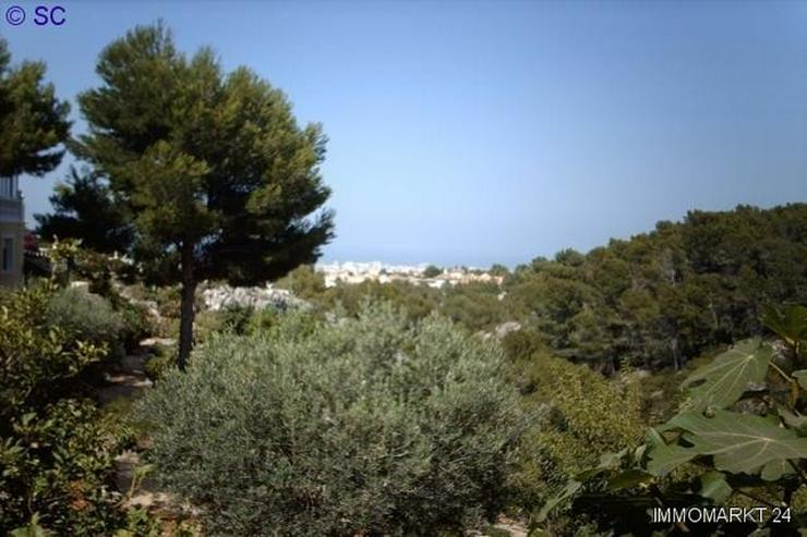 Bild 2: Luxusvilla in Denia