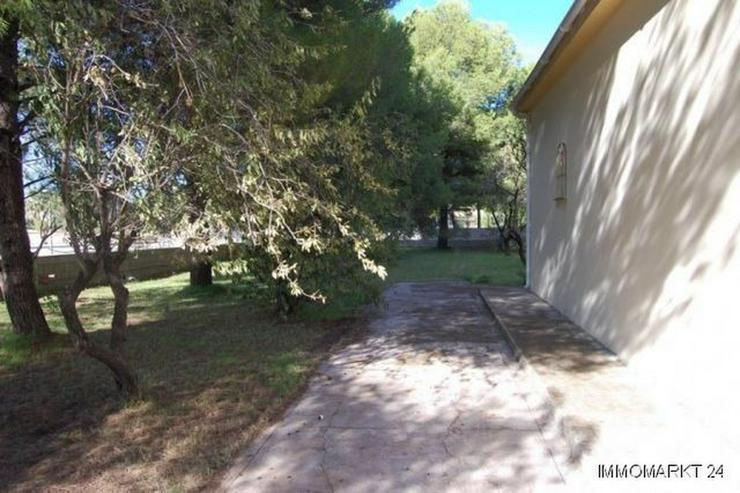 Bild 3: Villa mit 6 Grundstücken