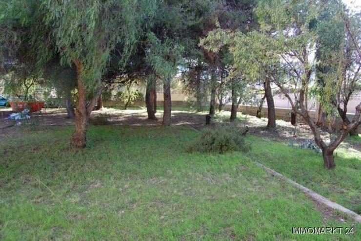 Bild 2: Villa mit 6 Grundstücken