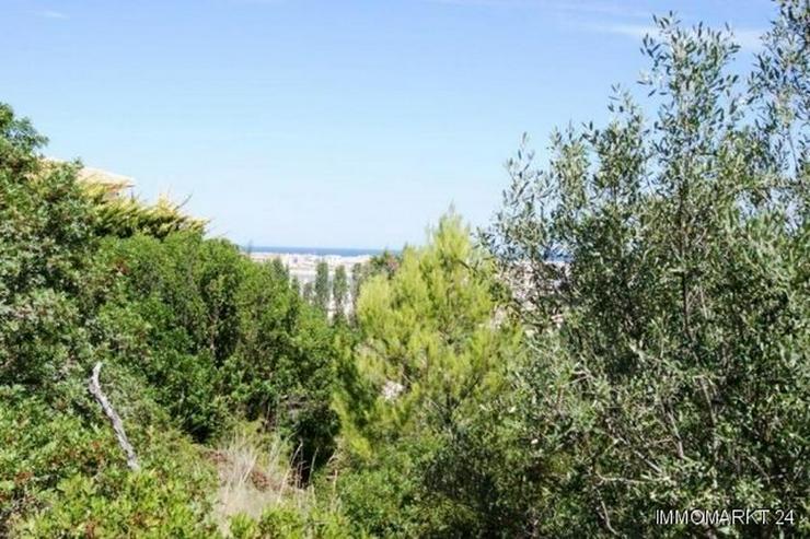 Bild 4: Grundstück mit sehr schönem Meerblick