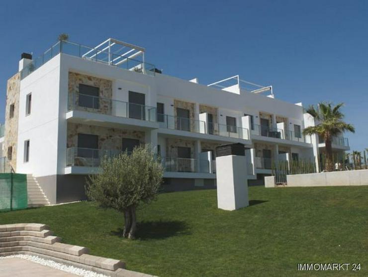 Bild 2: Moderne Penthouse-Wohnungen mit Gemeinschaftspool