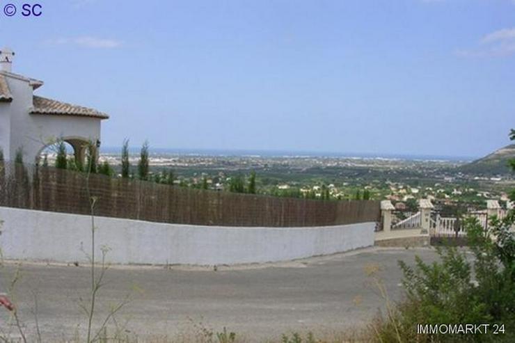 Bild 3: Grundstück in Pedreguer