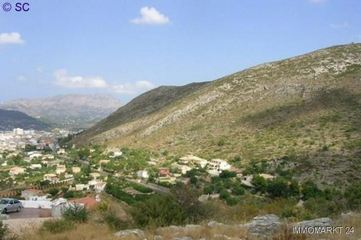 Bild 5: Grundstück in Pedreguer