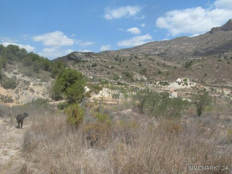 Bild 6: Grundstück mit schönem Ausblick bei Tibi