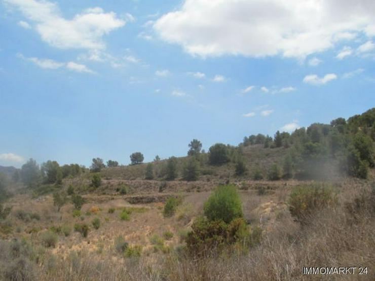 Bild 3: Grundstück mit schönem Ausblick bei Tibi
