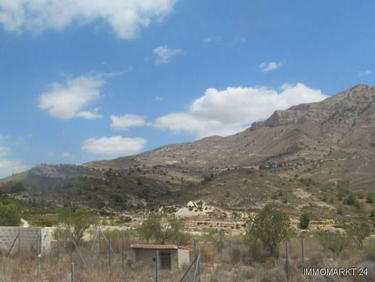 Bild 4: Grundstück mit schönem Ausblick bei Tibi