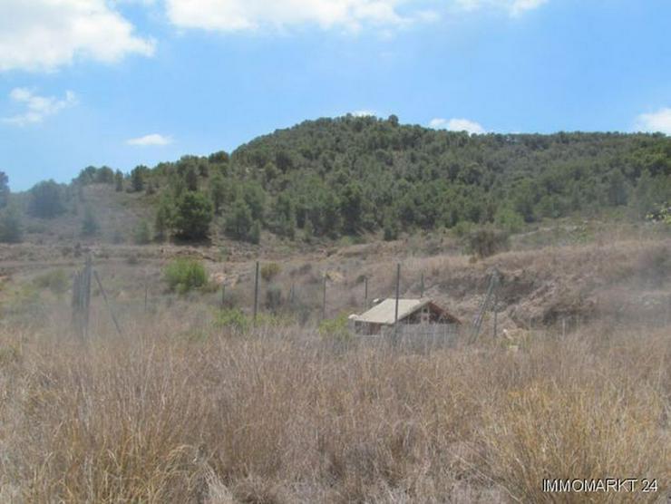 Bild 5: Grundstück mit schönem Ausblick bei Tibi