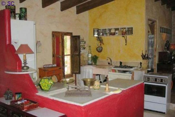 Bild 5: Finca mit Gästeappartement mitten im Weinanbaugebiet