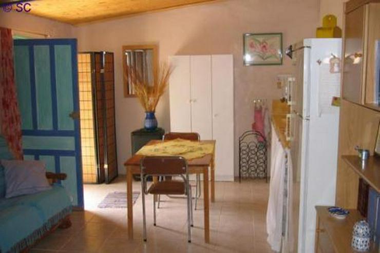 Bild 2: Finca mit Gästeappartement mitten im Weinanbaugebiet