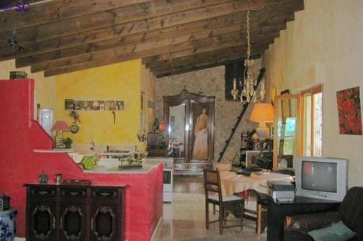 Bild 6: Finca mit Gästeappartement mitten im Weinanbaugebiet