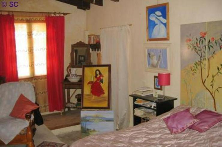 Bild 4: Finca mit Gästeappartement mitten im Weinanbaugebiet