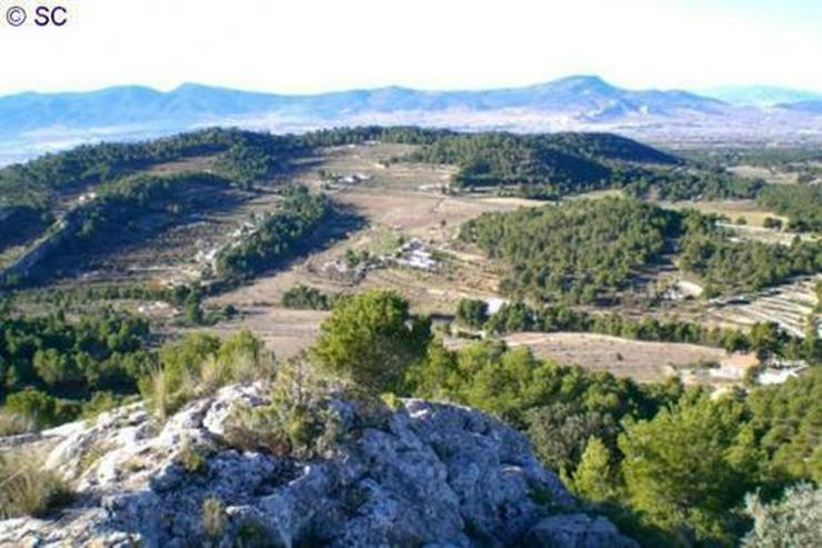 Baugrundstück bei Ibi - Grundstück kaufen - Bild 1
