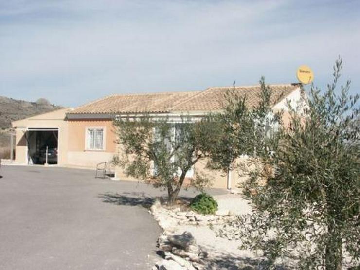 Landhaus mit Pool, Garage und wunderschönem Ausblick - Haus kaufen - Bild 1