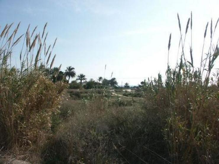 Bauparzelle mit Meerblick für Investoren - Grundstück kaufen - Bild 1