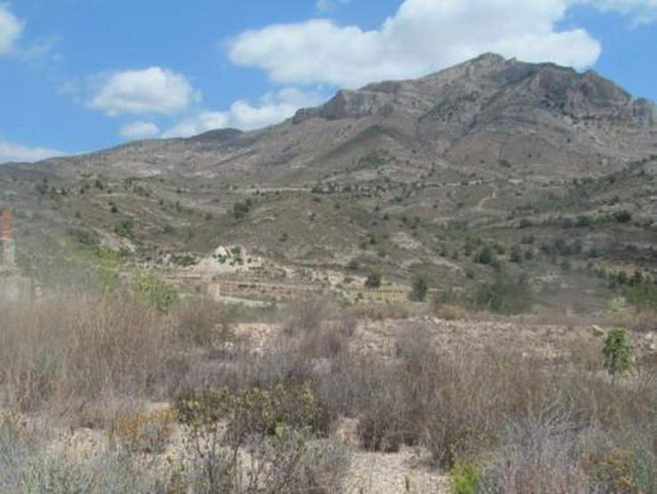 Grundstück mit schönem Ausblick bei Tibi - Bild 1