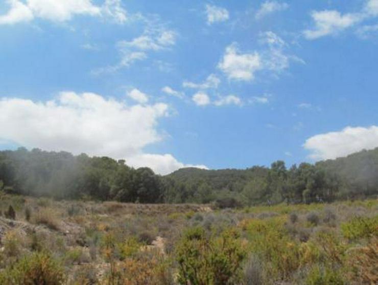 Bild 2: Grundstück mit schönem Ausblick bei Tibi
