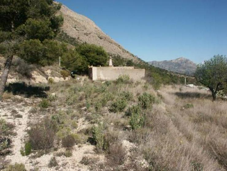 Bild 2: Grundstück mit Meerblick bei Tibi