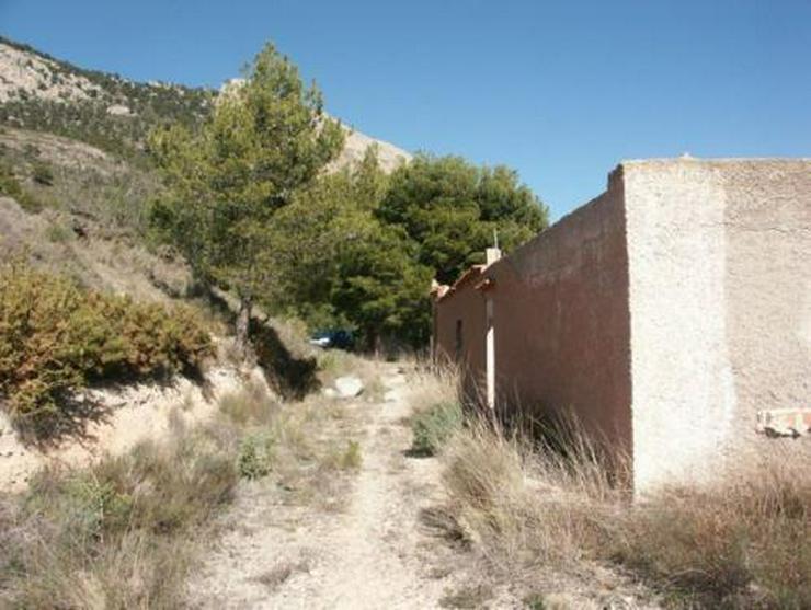Bild 4: Grundstück mit Meerblick bei Tibi