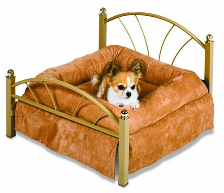 Bild 2: Urlaubsbetreuung,Tiersitting,Hauswächter