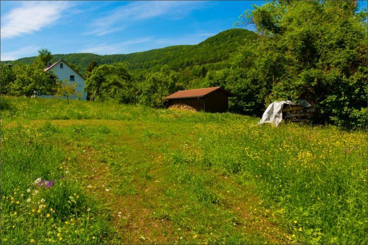 Bild 4: Gelegenheit: Grundstück in Ortsrandlage von Kuchen