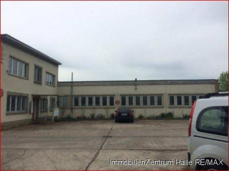Bild 2: Hallen_lager_prod in 06112 - Halle