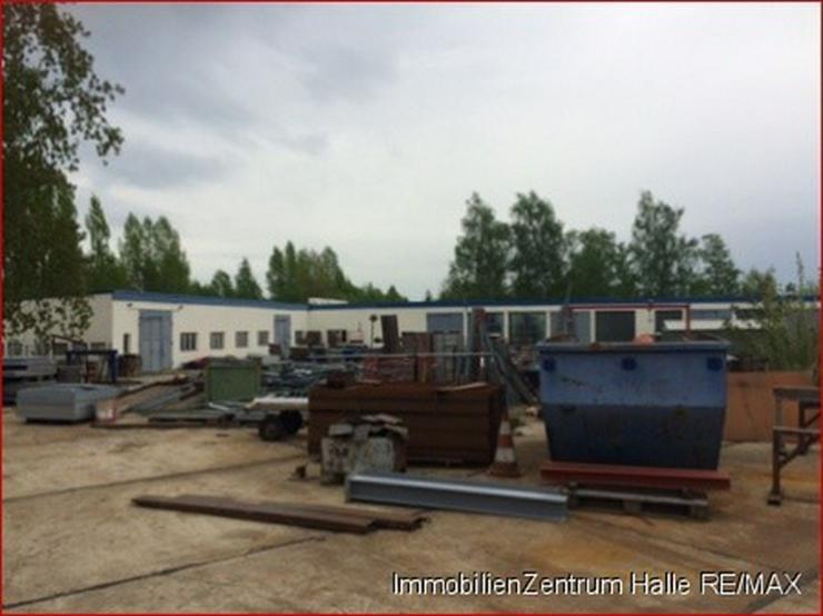 Bild 3: Hallen_lager_prod in 06112 - Halle