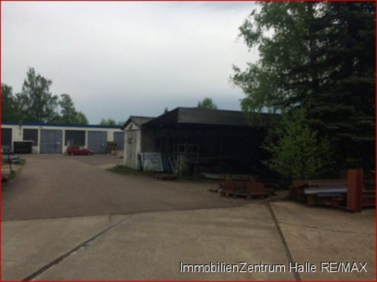 Bild 5: Hallen_lager_prod in 06112 - Halle