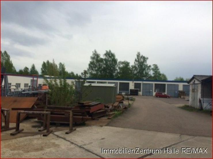 Bild 4: Hallen_lager_prod in 06112 - Halle