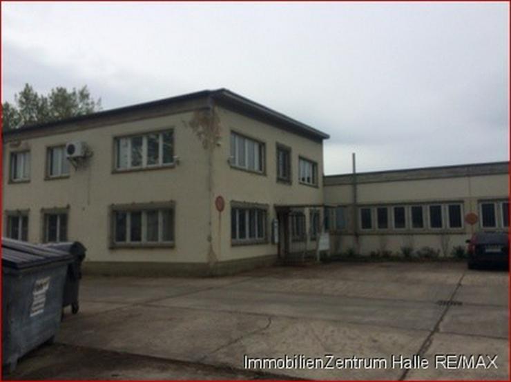 Hallen_lager_prod in 06112 - Halle - Gewerbeimmobilie kaufen - Bild 1
