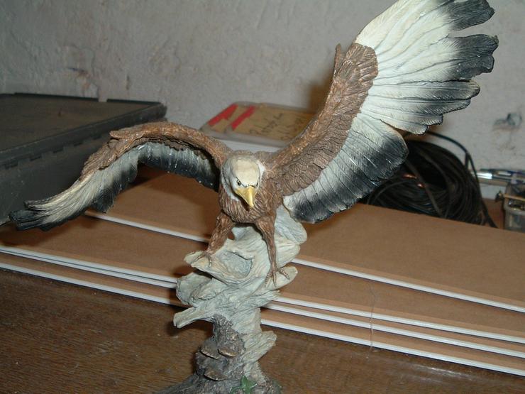 Bild 2: Canadischer Adler