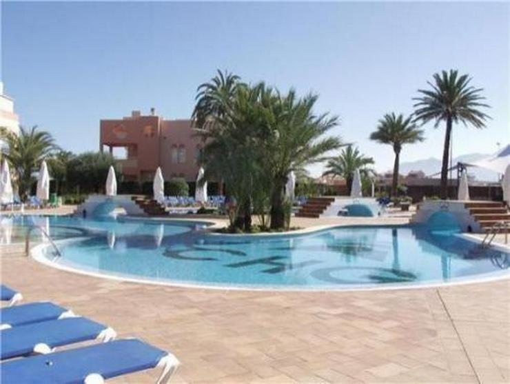 Bild 3: Sehr schönes Apartement im 5-Sterne-Hotel Oliva Nova mit direktem Zugang zum Strand