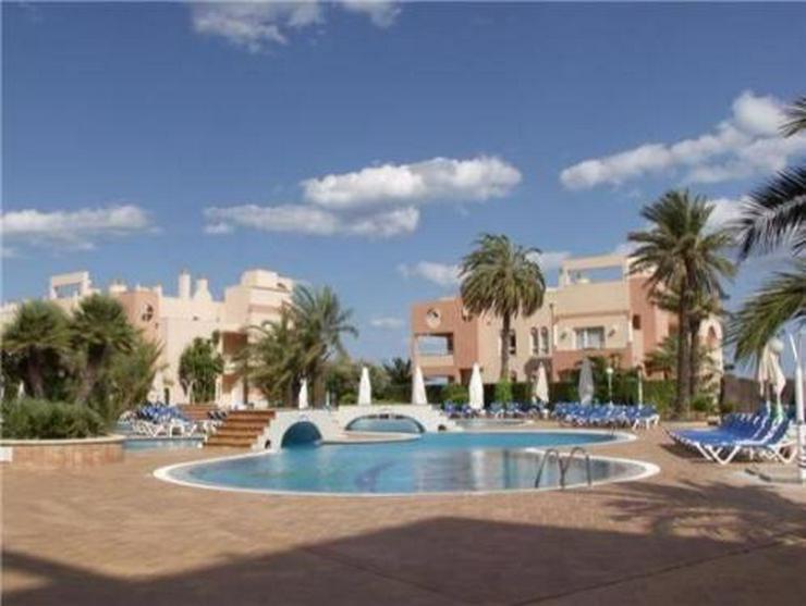 Bild 4: Sehr schönes Apartement im 5-Sterne-Hotel Oliva Nova mit direktem Zugang zum Strand