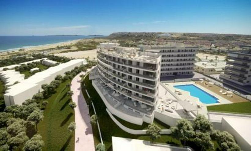 Bild 2: Exklusive 4-Zimmer-Wohnungen mit Meerblick nur 300 m vom Strand