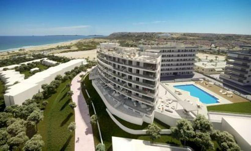 Bild 3: Exklusive 4-Zimmer-Penthouse-Wohnungen mit Meerblick nur 300 m vom Strand