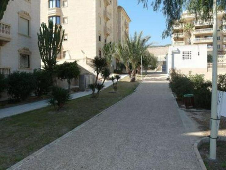 Bild 18: Appartement mit Meerblick nur 500 m vom Strand