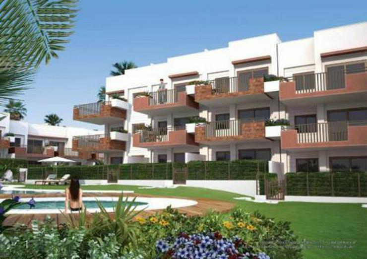 Bild 6: Wunderschöne Appartements mit Gemeinschaftspool in Punta Prima