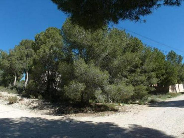Baugrundstück mit schönem Ausblick bei Tibi - Grundstück kaufen - Bild 1