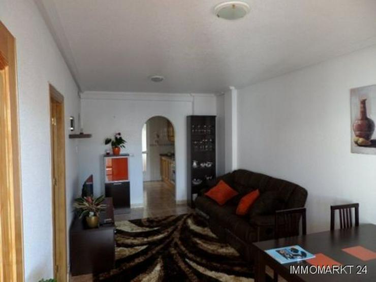 Bild 6: Appartement mit Gemeinschaftspool