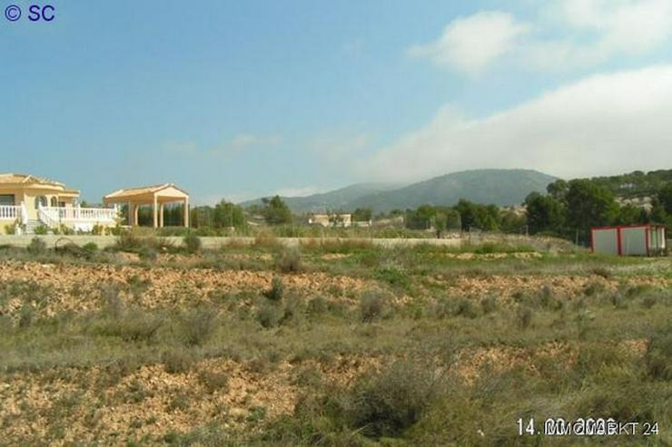 Bild 3: Baugrundstück bei Tibi