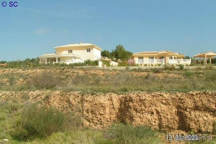 Baugrundstück bei Tibi - Grundstück kaufen - Bild 1