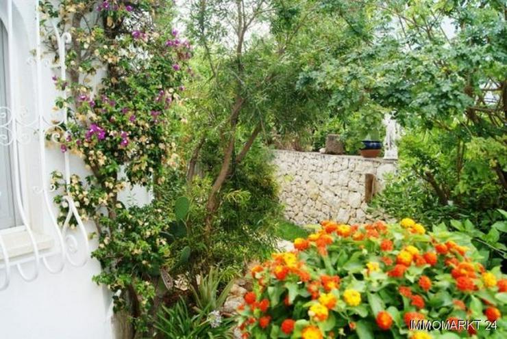 Bild 4: Villa mit Panoramablick