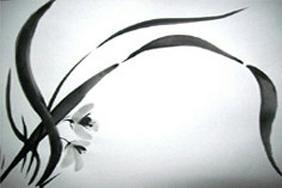 Kreatives QiGong - Sch�nheit & Wohlbefinden - Bild 1