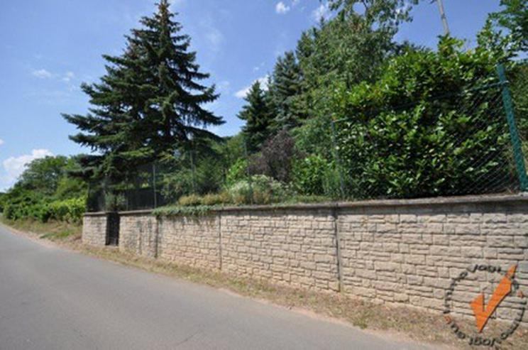 PUR Natur! Rechts der Golfclub Nahetal, links der Blick zur Ebernburg! - Grundstück kaufen - Bild 1