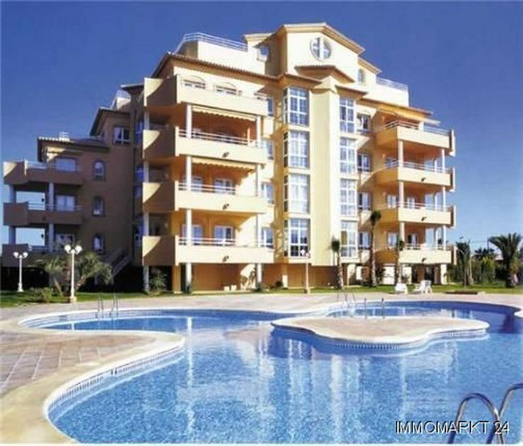 Meernahes, gepflegtes Appartement direkt am Golfplatz Oliva Nova Golf - Wohnung kaufen - Bild 1