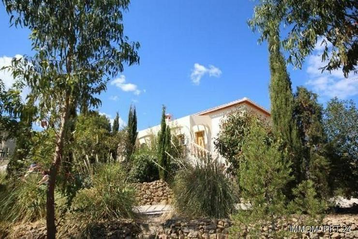 Bild 5: Traumfinca auf paradiesischem Anwesen in Parcent