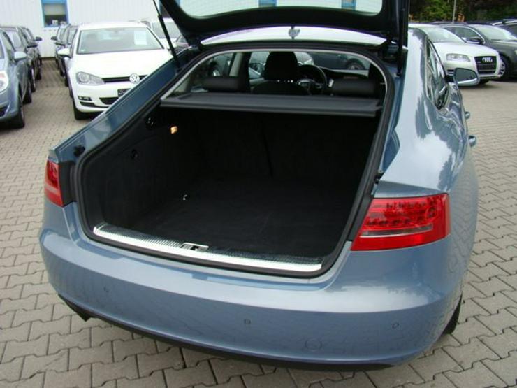 Bild 14: AUDI A5 2.0 TDI Sportback Aut. ACC Navi+ Xenon PDC