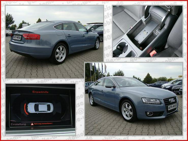 Bild 5: AUDI A5 2.0 TDI Sportback Aut. ACC Navi+ Xenon PDC