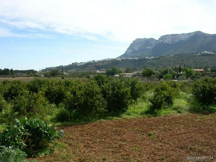 Grundstück am Rande der Ortschaft Beniarbeig - Grundstück kaufen - Bild 1