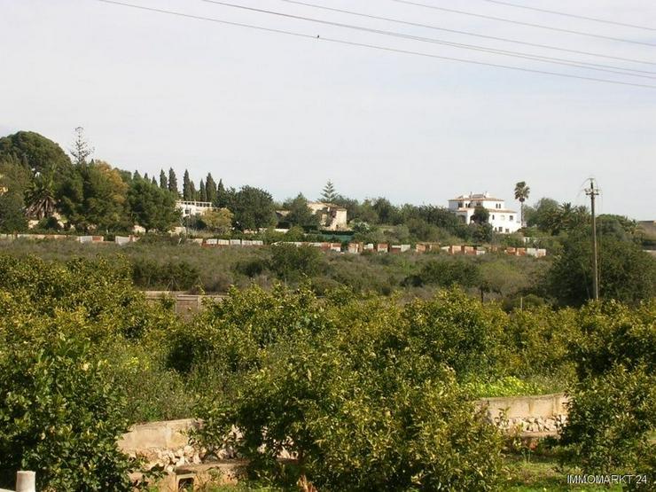 Bild 3: Grundstück mit Ruine in ruhiger Lage